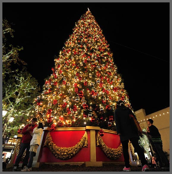 The Grove Christmas tree 2011 at night